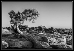 Canyonlands NP, Utah; X-T1 by jack graham
