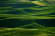 Palouse, WA; X-T1 300mm Nikkor by bill fortney